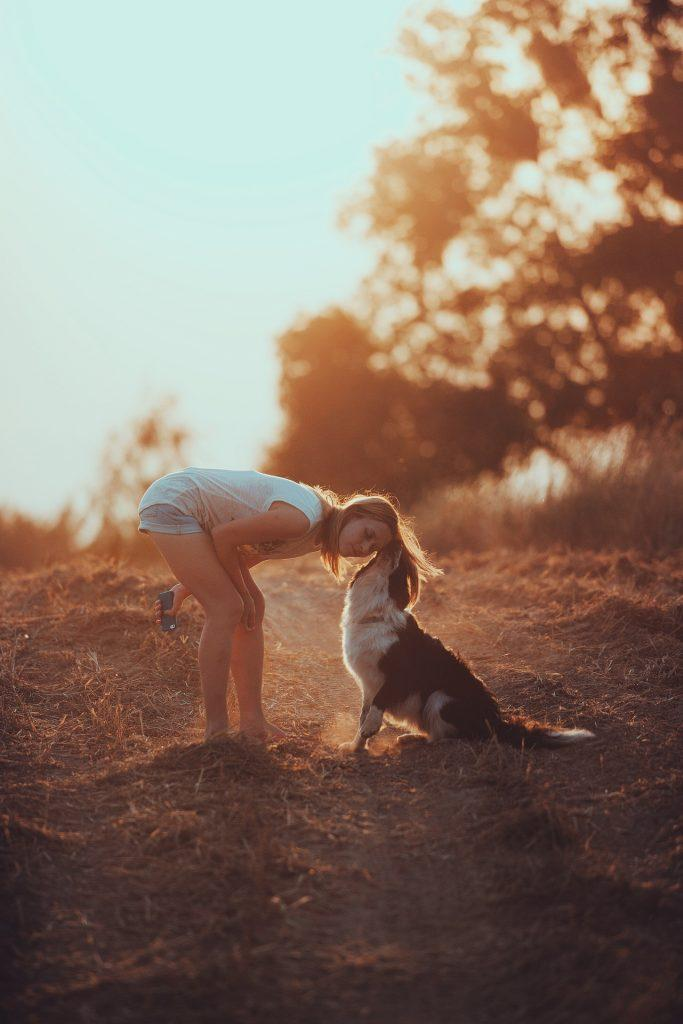 Entspannt mit Hund