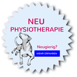 NEU_Physiotherapie
